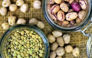 pasulj i socivo kao izvori proteina